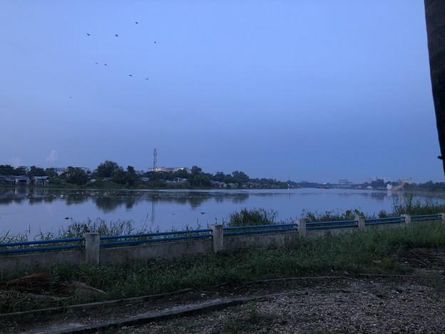 10月10日の川の様子 (1)