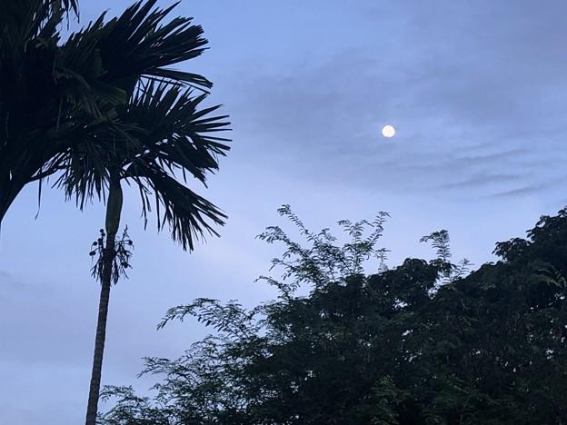 10月23日のお月さんat ヤンゴン (1)