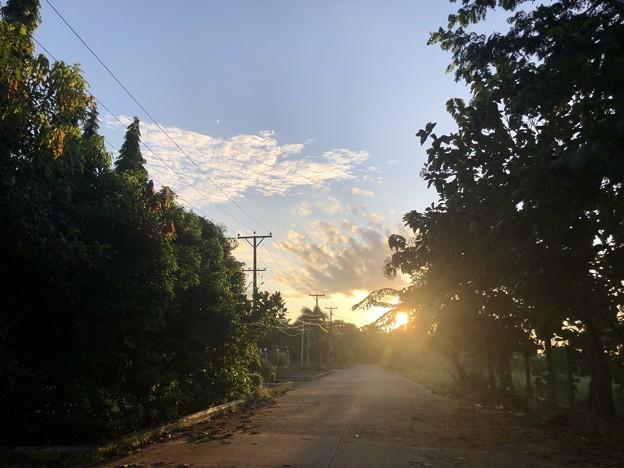 10月24日のヤンゴンの朝 (8)