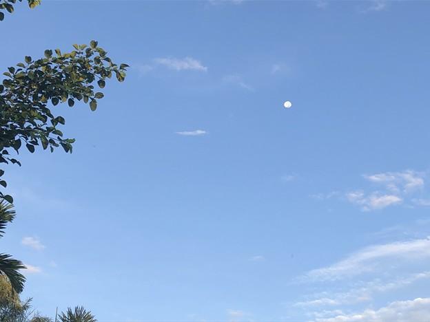 10月24日のヤンゴンの朝 (7)