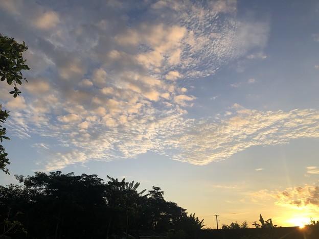 10月24日のヤンゴンの朝 (4)