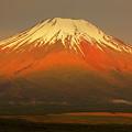 Photos: 梅雨富士_赤富士の光景