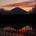 Photos: 高層雲の夕景_エピローグ