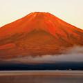 赤富士の朝