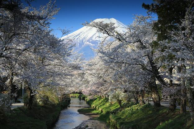 富士山 2