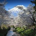 Photos: 富士山 2