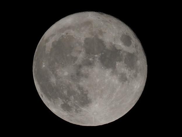 中秋の名月その1