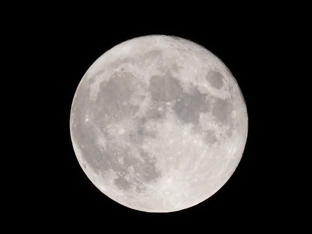 中秋の名月その2