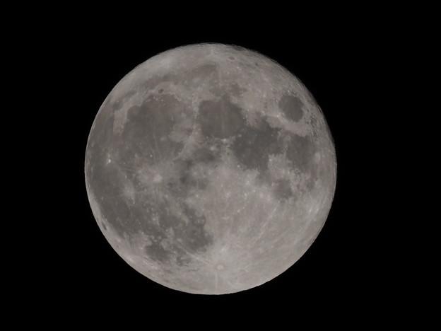 中秋の名月その3