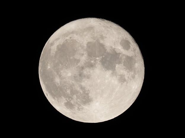 中秋の名月その4
