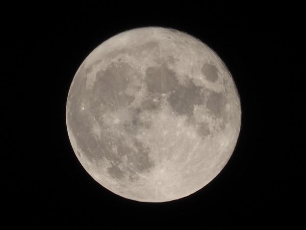 中秋の名月その5