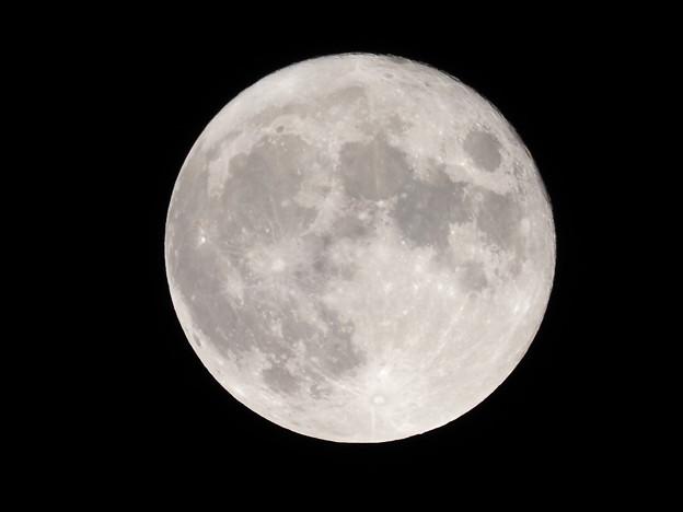 中秋の名月その6