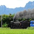 Photos: 重装備2010初秋 5カット