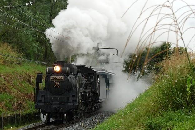 P1110181