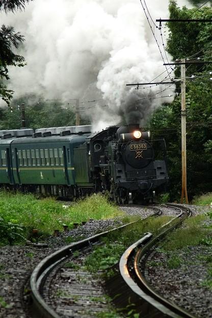 9月の雨~2010初秋5カット