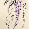 Photos: 絵手紙「フジの花」 by ふうさん