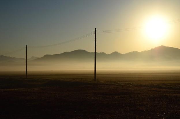 晩秋田圃~fog morning