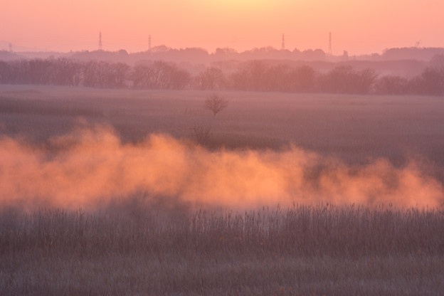 Photos: 赤い霧