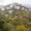 Photos: 大雨