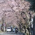 Photos: 逗子ハイランド