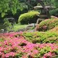 躑躅の庭園