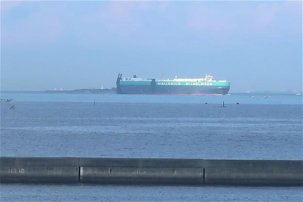 Photos: 貨物船と第2海保