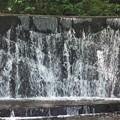 滝~上野公園