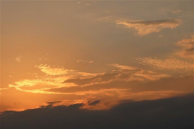 夕日~披露山にて
