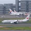 羽田空港~JAL