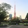 東京タワー202110