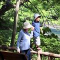 Photos: 井之頭公園