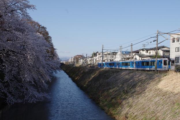 霞城公園 二ノ丸東大手門を望む