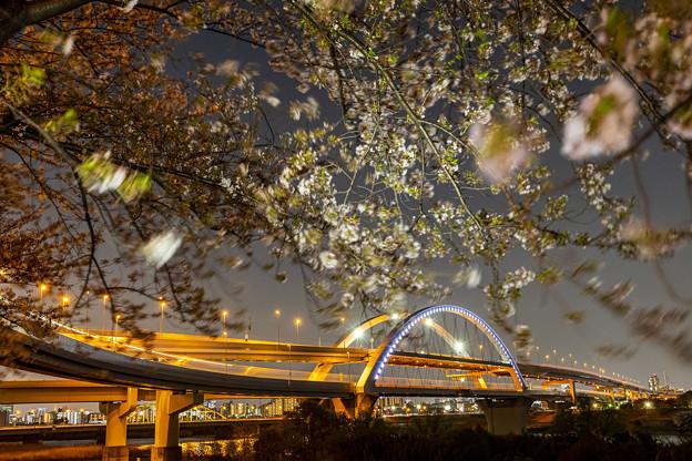 五色桜大橋