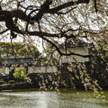 Photos: 皇居大手門