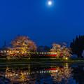 Photos: 再現像「月夜」