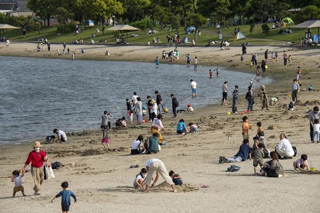 5月5日大森ふるさと浜辺公園 (3)