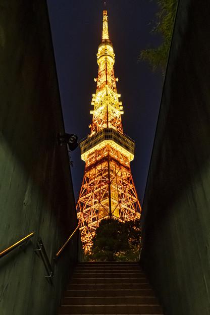 東京タワーのある風景 (2)