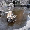 Photos: 花散らし雨