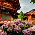 Photos: 不忍池弁天堂 (1)
