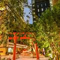 室町「宝徳神社 (2)