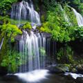 吐竜の滝(再現像)
