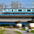 Photos: 六郷鉄橋