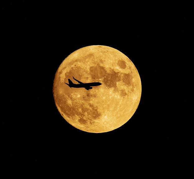 Photos: 「小望月」満月前夜