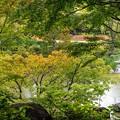 六本木檜町公園 (3)