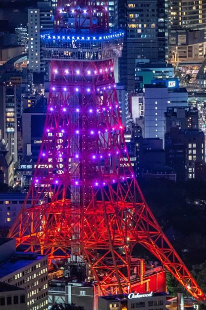 ダイヤモンドヴェール「東京タワー (1)