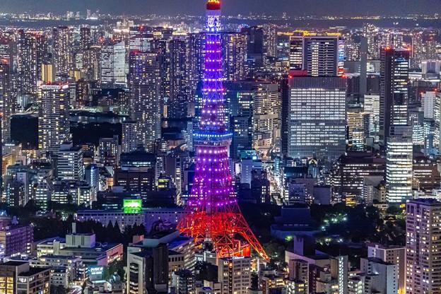 ダイヤモンドヴェール「東京タワー (2)