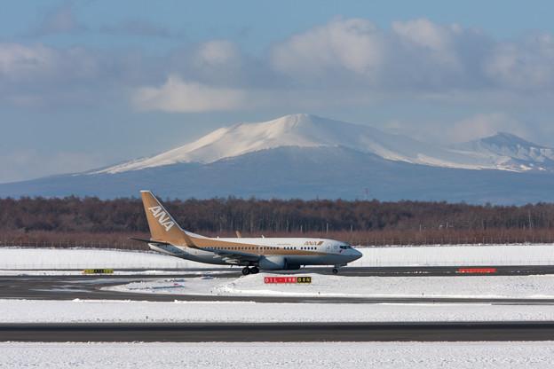 ANA 737-700 JA01AN 金シャチと樽前山
