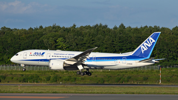 ANA B787 JA808A 新千歳空港