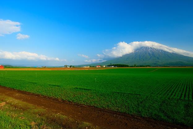 雲を頂く羊蹄山 その2