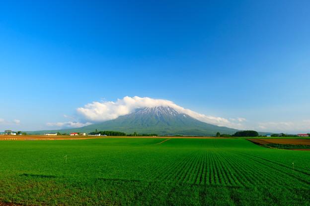 雲を頂く羊蹄山 その3